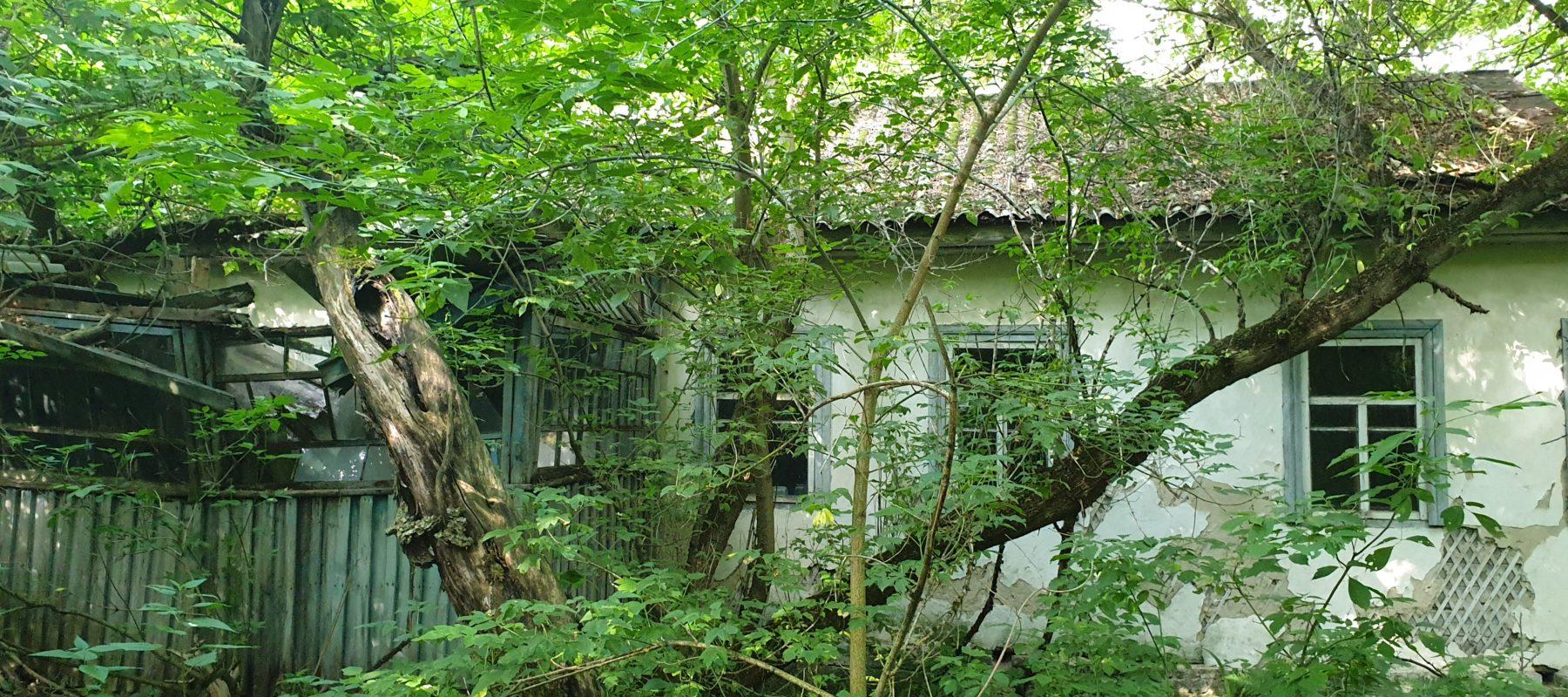 The house in Zalissia