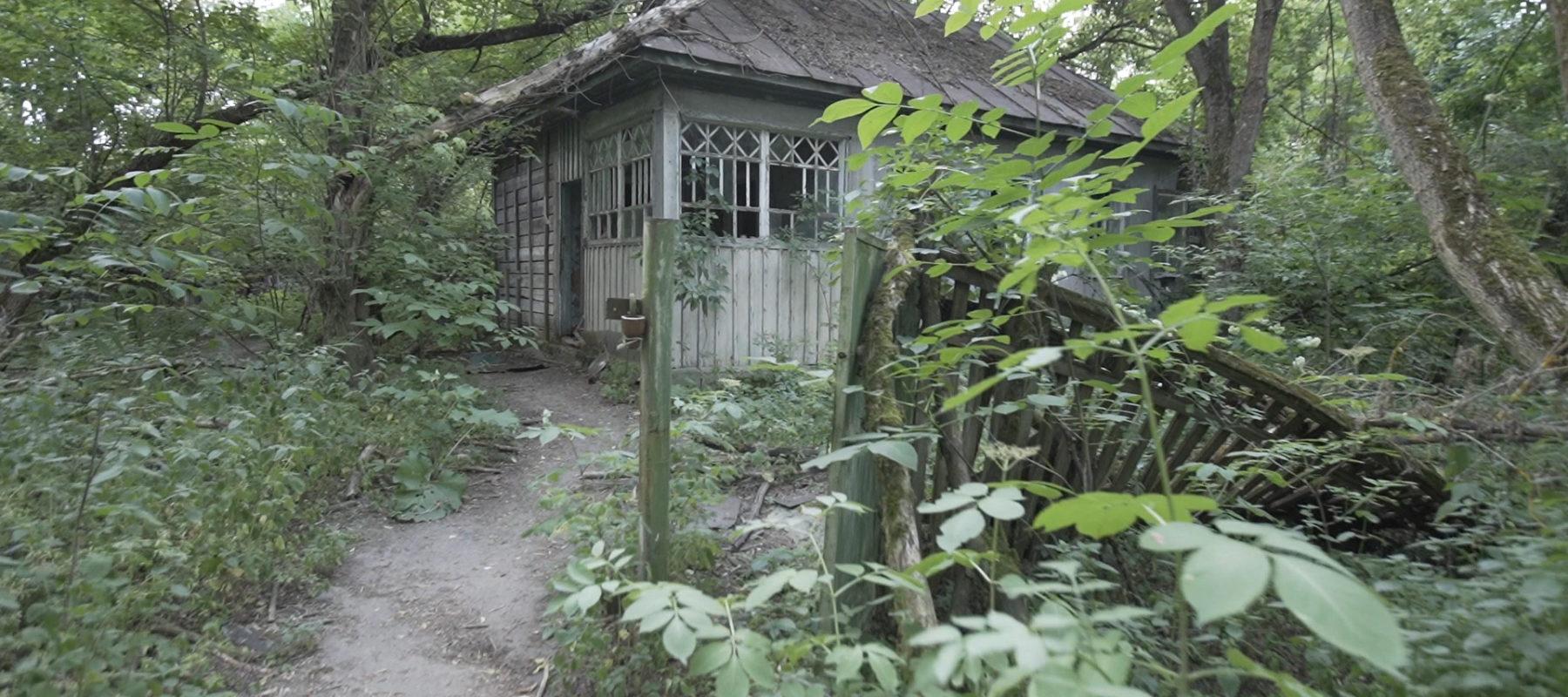 Залесье. Дом